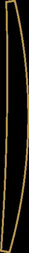Nachtcafe-Freising-Logo-icon-3